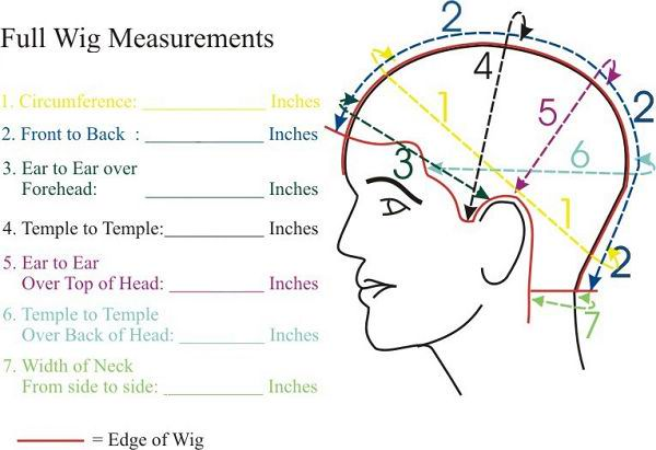 full-wig-measurements